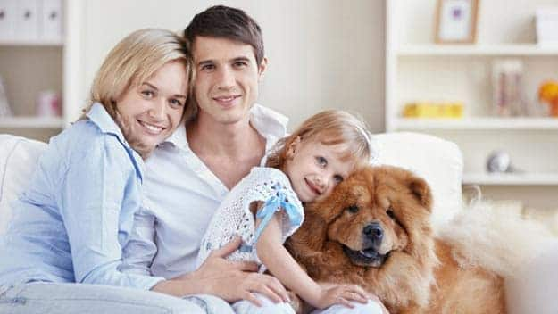 Wills & Trusts dog-young-family Direct Wills Chadwell Heath